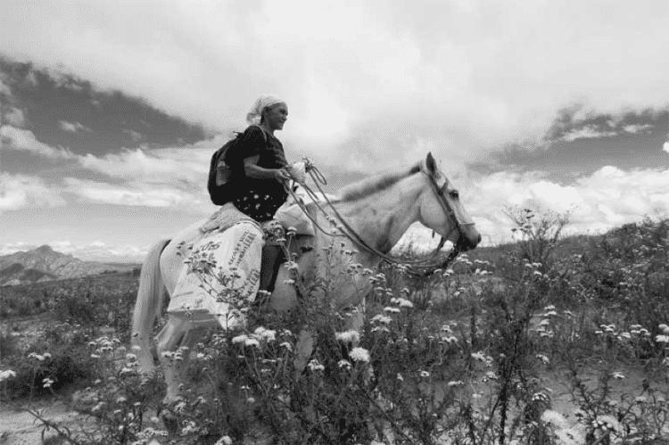 As sempre-vivas crescem em solos pobres do Cerrado - João Roberto Ripper/imagenshumanas - João Roberto Ripper/imagenshumanas
