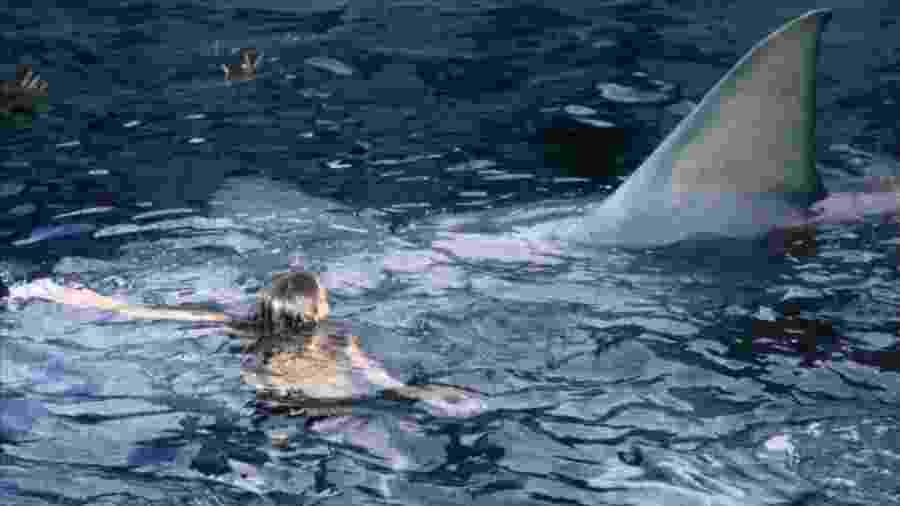 """Cena do filme """"Tubarão"""" (1975), de Steven Spielberg - Reprodução"""
