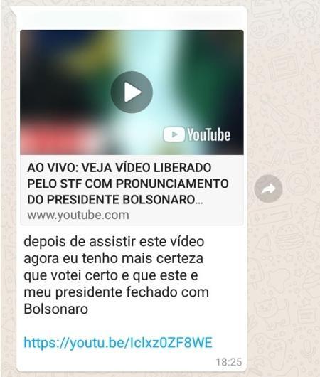 Mensagem enviada em grupo de WhatsApp bolsonarista após divulgação de vídeo da reunião de 22 de abril - Reprodução