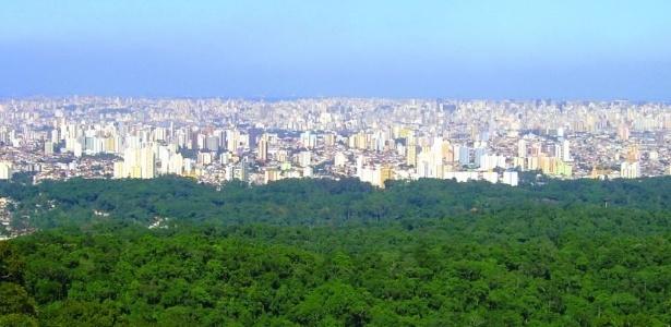 Morte de macacos fechou o Horto Florestal e o Parque da Cantareira (foto)