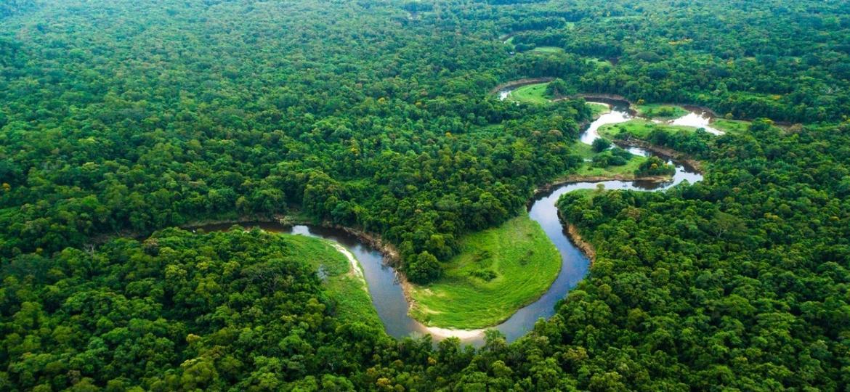 Projetos em todo o país estimulam desenvolvimento sustentável - Getty Images/iStockphoto