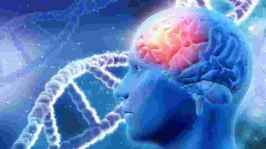Pesquisa descobriu coquetel que reduz as proteínas Beta-amiloide no cérebro - iStock