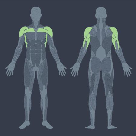 Movimento certo, músculos, desenvolvimento de ombros - iStock/ Arte UOL VivaBem - iStock/ Arte UOL VivaBem