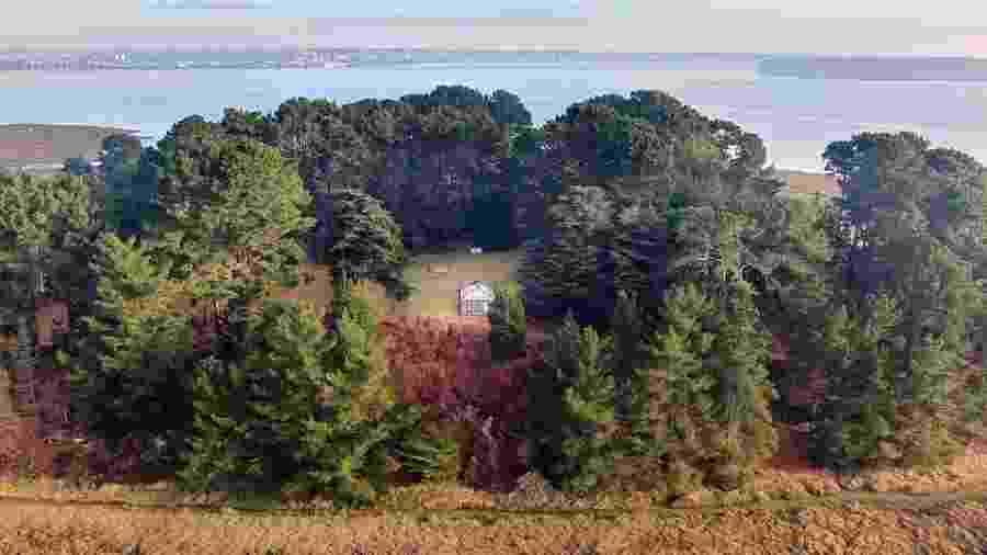 Vista aérea de Round Island, ilha disponível para aluguel em site britânico - Reprodução/Albury&Hall