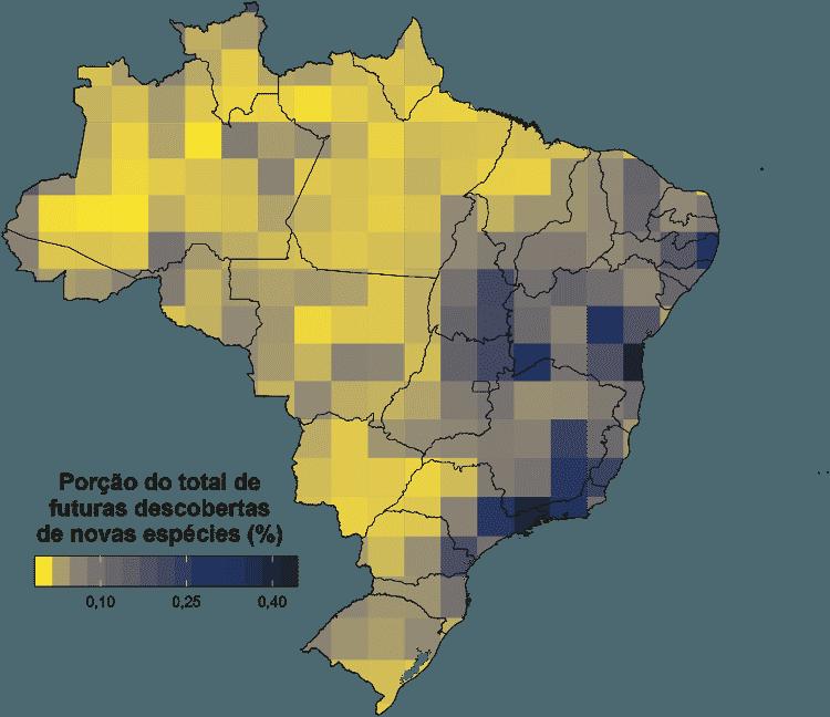 Mapa mostra distribuição de possíveis novas descobertas pelo Brasil no estudo do professor Mário Ribeiro de Moura, da UFPB - Arquivo pessoal - Arquivo pessoal