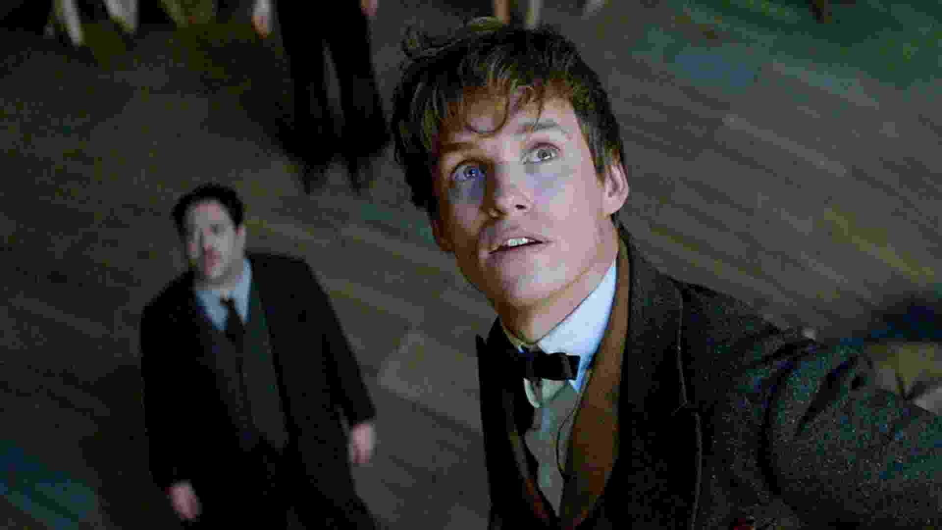 """Dan Fogler (ao fundo) e Eddie Redmayne em cena do filme """"Animais Fantásticos e Onde Habitam"""" - Divulgação /Warner"""