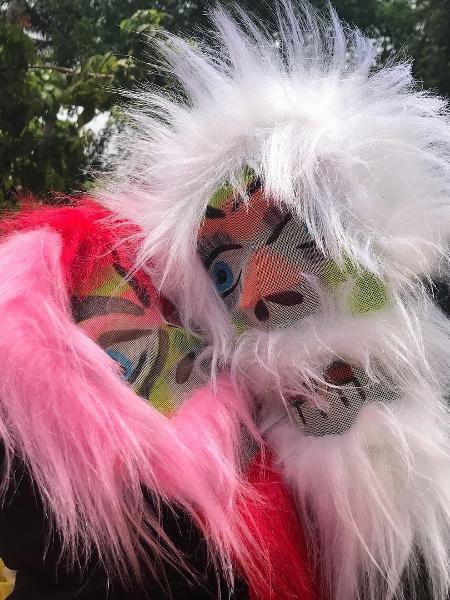 Mascarados, Fátima Bernardes e Túlio Gadelha curtem o pré-Carnaval em Olinda - Reprodução/Instagram