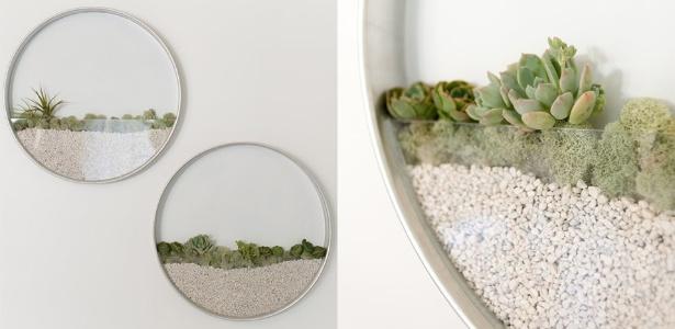 Criado por Kim Fisher, o quadro vivo com espécies de suculentas lembra um terrário - Divulgação/ Kim Fisher Designs
