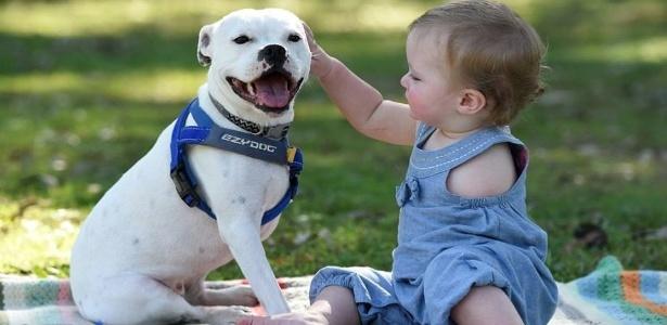 Ella nasceu apenas com o braço direito e a cadela Snowy tem três patas - Reprodução/Facebook/The Escapades of Ella and Snowy