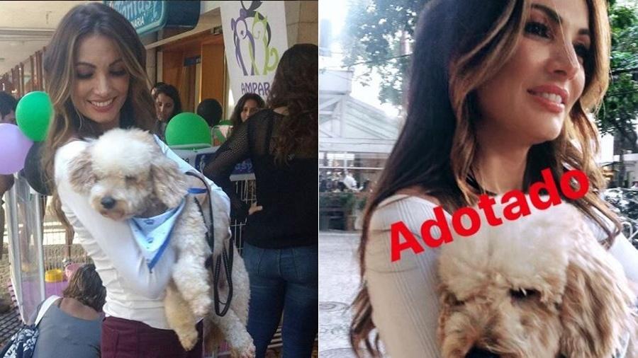 Patricia Poeta adota cachorrinho em feira - Reprodução/Instragram Patricia Poeta