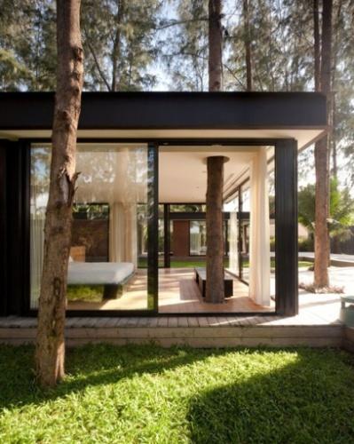 Que tal ter uma árvore na sala? Veja casas que se misturam com o verde - BOL Fotos - BOL Fotos