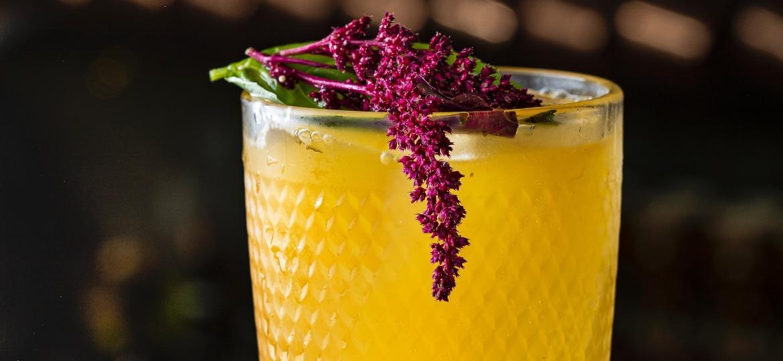 """Orange Sky, com suco de laranja e vodca com infusão de cumaru, a """"baunilha brasileira"""" - ZMPHOTO.COM.BR"""