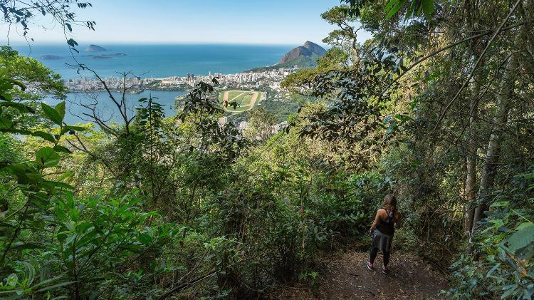 Parque Nacional da Tijuca, no Rio de Janeiro, um dos locais reabertos para ecoturismo no Brasil - Marcello Cavalcanti - Marcello Cavalcanti