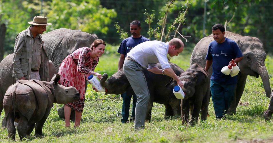 13.abr.2016 - Kate e William, os duques de Cambridge, alimentam elefantes durante visita ao Parque Nacional Kaziranga, na Índia
