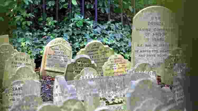 Os túmulos do cemitério de animais são do século 19 e começo do século 20 - Baloncici/Getty Images - Baloncici/Getty Images