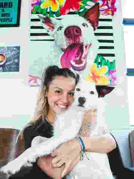 Gabriela Pet Art  - Divulgação - Divulgação
