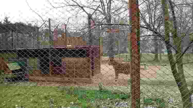 zoo luján - Reprodução - Reprodução