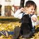 Crianças e cachorros têm o mesmo tipo de inteligência social, diz estudo - Getty Images