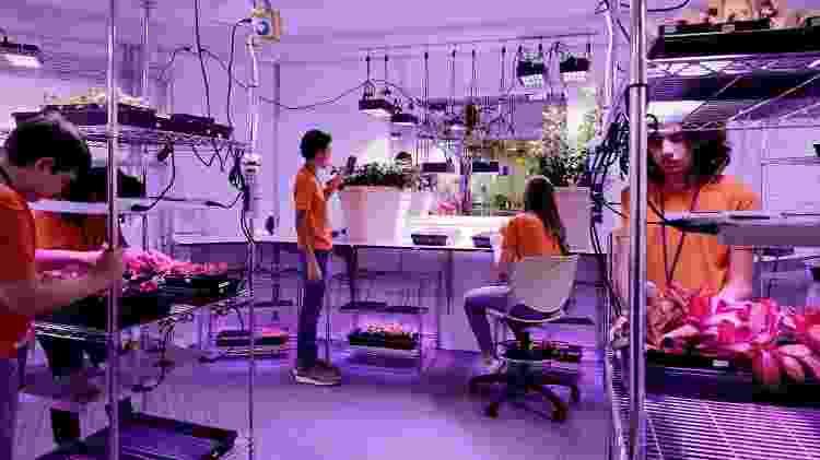 No passeio, turistas têm a chance de se divertir em um laboratório de alimentos  - Divulgação/Kennedy Space Center - Divulgação/Kennedy Space Center