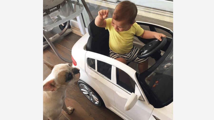 Gabriel, filho de Andressa Suita e Gusttavo Lima, brinca com cachorrinho - Reprodução/Instagram