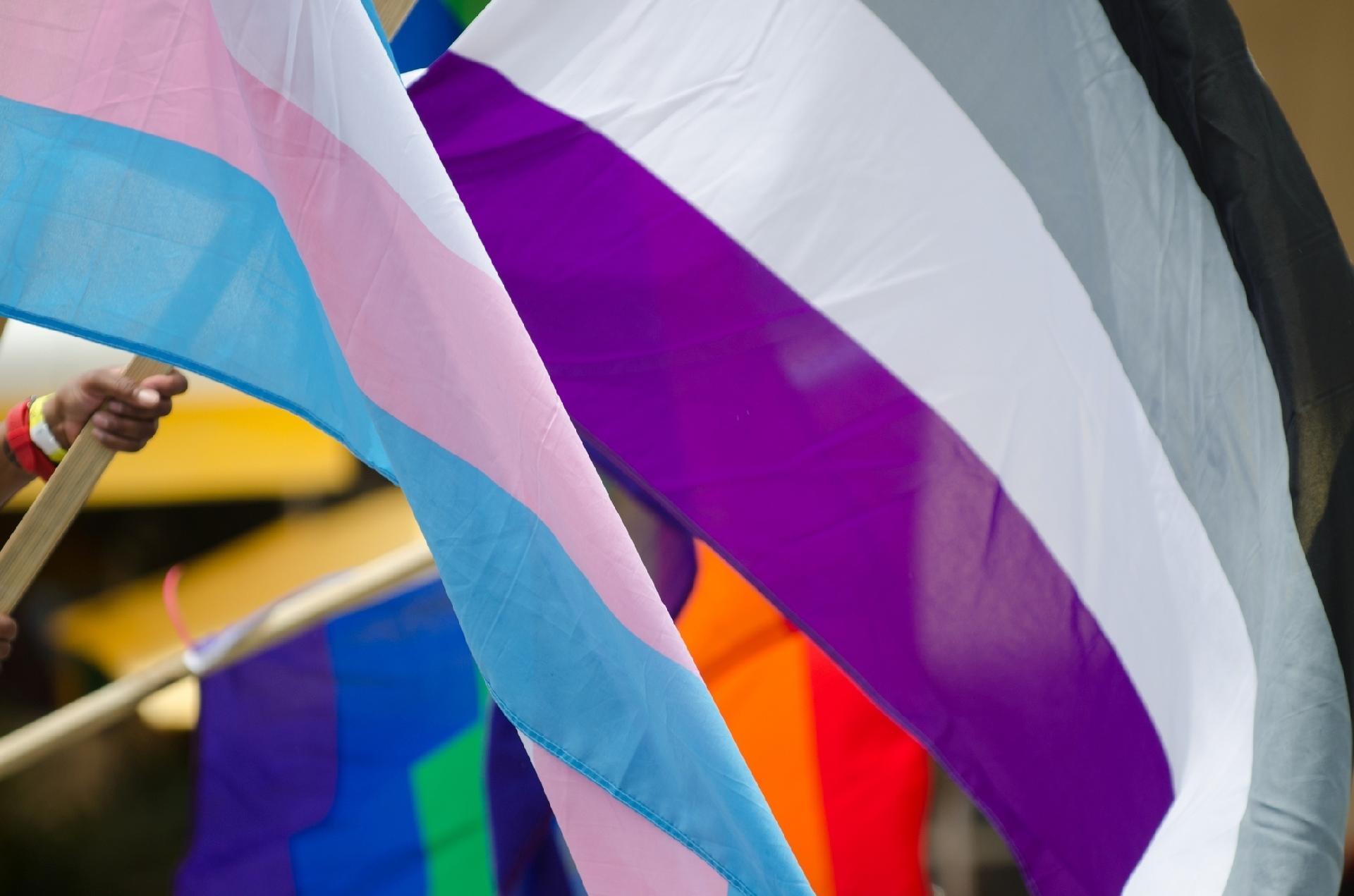 Significado de asexual en biologia