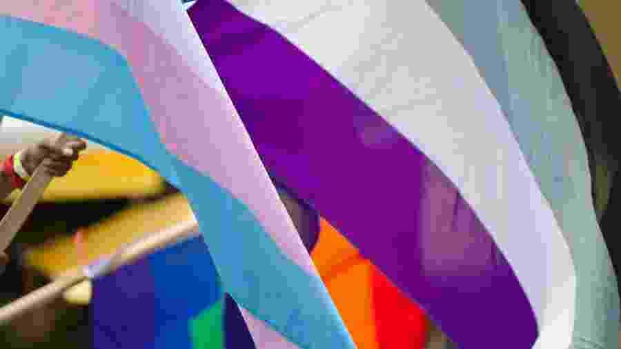 A bandeira assexual ao lado da bandeira trans (rosa e azul) - iStock