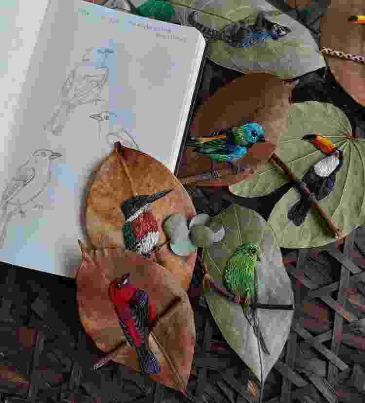 Desenhos e as folhas bordadas com as sketchs - Arquivo Pessoal - Arquivo Pessoal