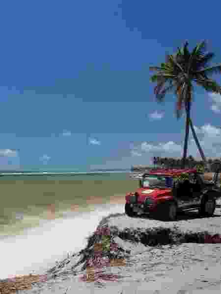 Praia da Camboa: parte do roteiro do passeio de bugue - Eduardo Vessoni - Eduardo Vessoni