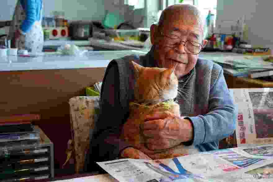 Jiji e o gato Kinako - Akiko DuPont/Divulgação
