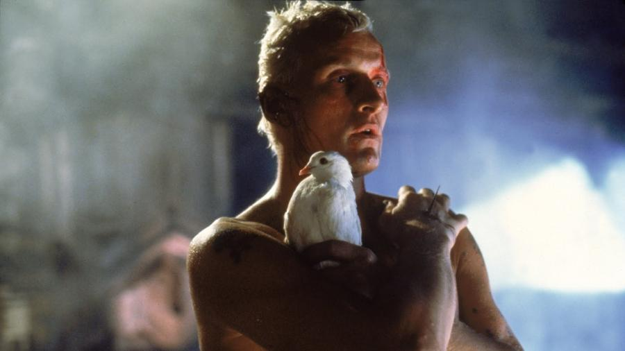 """Cena de """"Blade Runner, O Caçador de Androides"""" (1982), de Ridley Scott - Reprodução"""