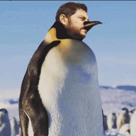 """Evaristo Costa """"vira"""" pinguim e reclama do frio - Reprodução/Instagram/evaristocostaoficial"""