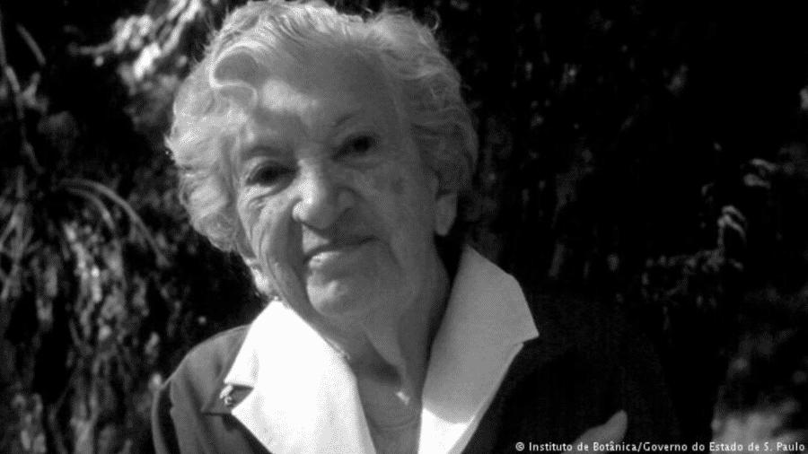 Graziela Maciel Barroso - Instituto de Botânica/Governo do Estado de São Paulo