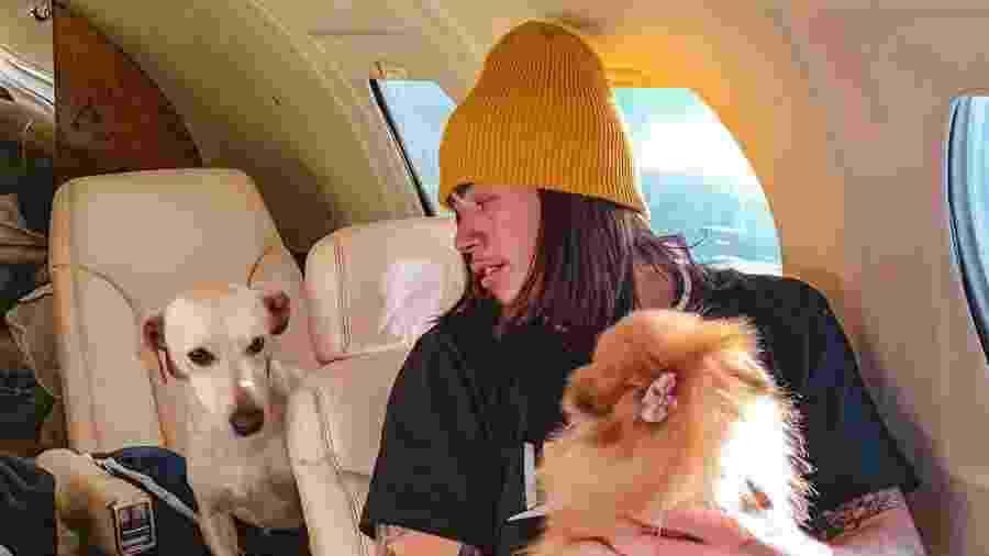 Whindersson Nunes com suas cachorrinhas em jatinho - Reprodução/Instagram
