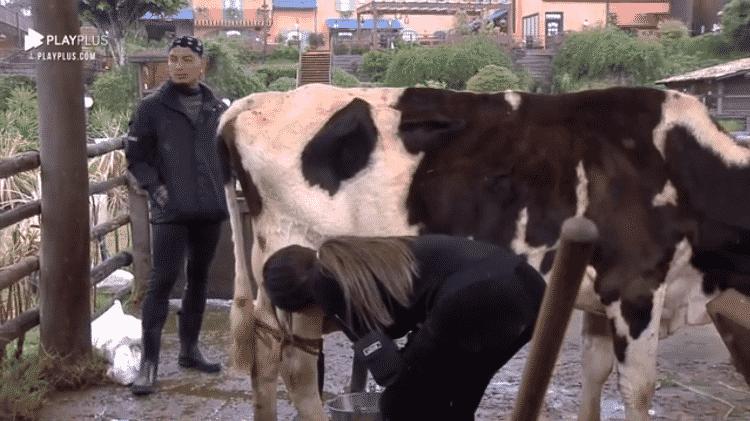 A Fazenda 2021: Liziane leva rabada de vaca - Reprodução/Playplus - Reprodução/Playplus