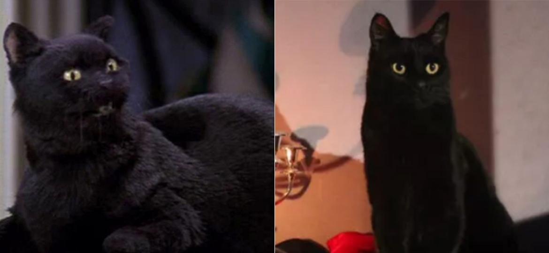 """O Salem de """"Sabrina, a Aprendiz de Feiticeira"""", e o Salem de """"O Mundo Sombrio de Sabrina"""" - Reprodução e Divulgação"""
