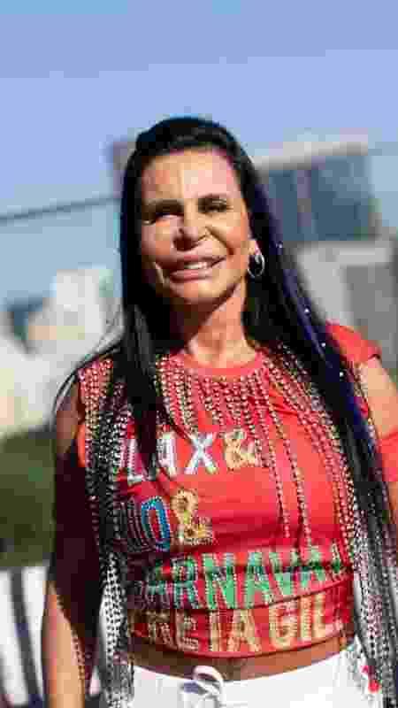 """Gretchen foi a """"Memedrinha"""" do bloco - Douglas Shineidr/UOL - Douglas Shineidr/UOL"""