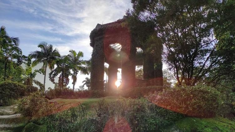 Jardim Botânico do Rio de Janeiro - Reprodução Instagram/Alexandre Machado - Reprodução Instagram/Alexandre Machado