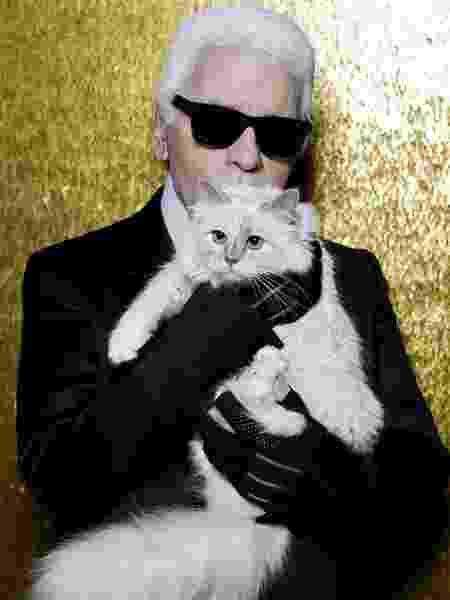 Karl Lagerfeld e sua gata brimanesa Choupette, que pode ser uma de suas herdeiras - Reprodução/Instagram/@choupette - Reprodução/Instagram/@choupette