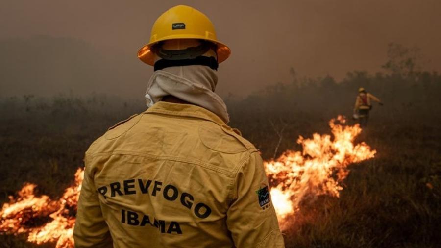 """Brigadistas lutam contra fogo; governo tem base oficial e """"não-oficial"""", com ajuda de voluntários - Reprodução"""