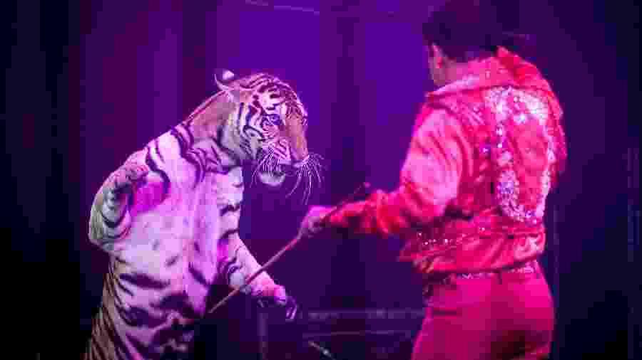 Tigre e domador em espetáculo de circo na Cidade do México, em 2014 - Xinhua/Pedro Mer