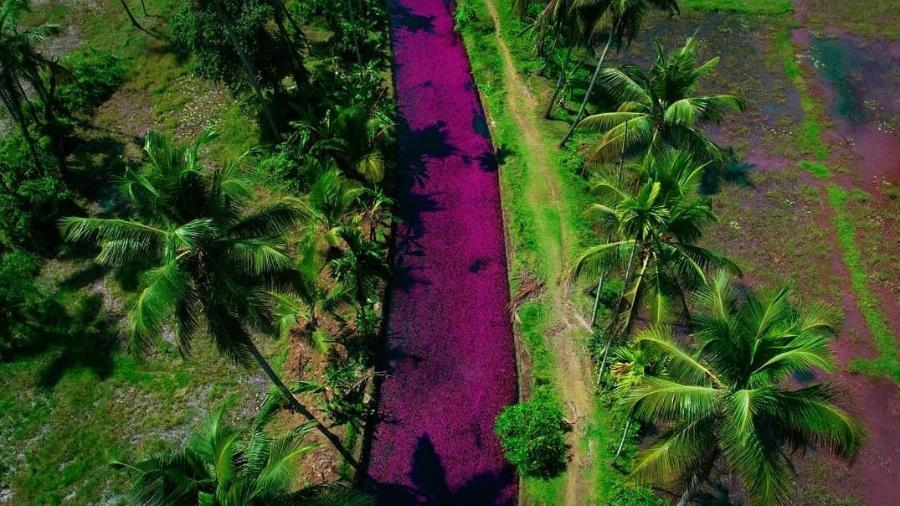 Rio em Querala - Deepesh John