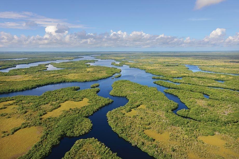 Everglades, na Flórida