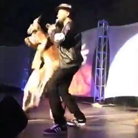 Rapper americano leva canguru ao palco durante show nos EUA - Reprodução/TMZ