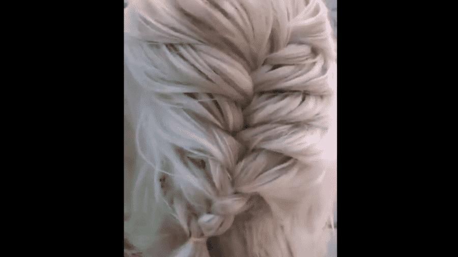 Internauta compara penteado trançado de cachorro ao cabelo de Elsa, do Frozen, e bomba na web - Reprodução/Twitter