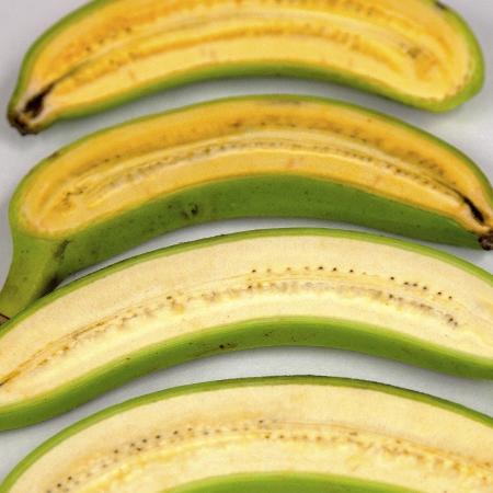 A banana dourada (a cima) é mais amarela que a fruta que estamos acostumados - Queensland University of Technology