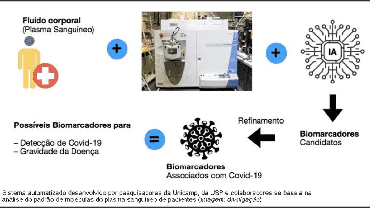 Unicamp USP  - Divulgação - Divulgação