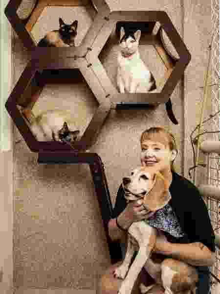 Thais Denker comprova que amizade entre cães e gatos é possível - Fernando Moraes/UOL - Fernando Moraes/UOL