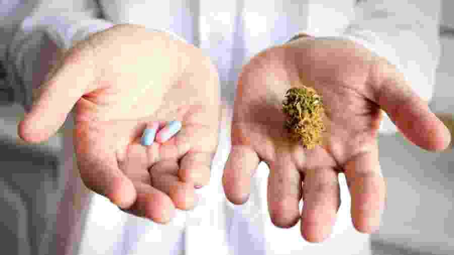 Os cientistas dizem que a pesquisa ainda não pode fornecer a resposta definitiva sobre os benefícios e malefícios associados à maconha medicinal - iStock