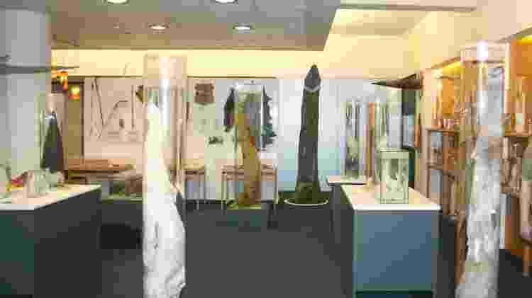 Interior do Icelandic Phallological Museum, na Islândia - Divulgação/IcelandicPhallologicalMuseum
