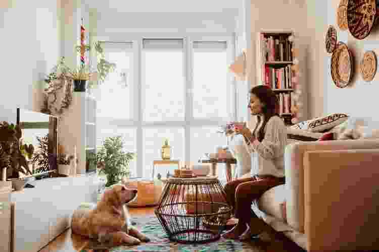 Saiba quais são as regras do condomínio em relação aos animais de estimação - Getty Images/EyeEm - Getty Images/EyeEm